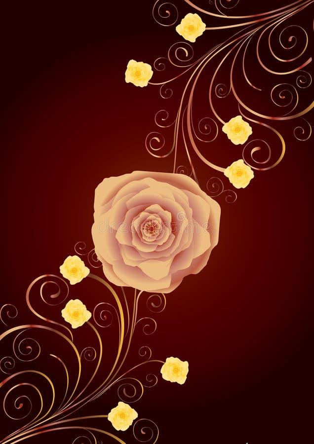 kędziorów złota różana herbata ilustracji