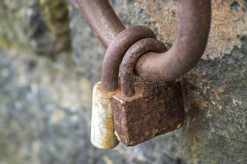 Kędziorek na żelaznym pierścionku fotografia stock