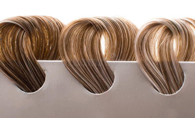 Kędziorki włosy z szarość obrazy stock