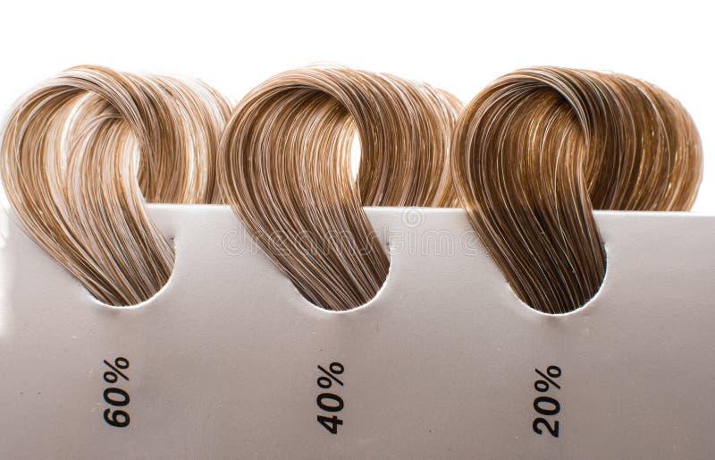 Kędziorki włosy z szarość obraz royalty free