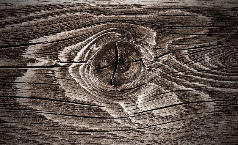 kępki drewno obrazy royalty free
