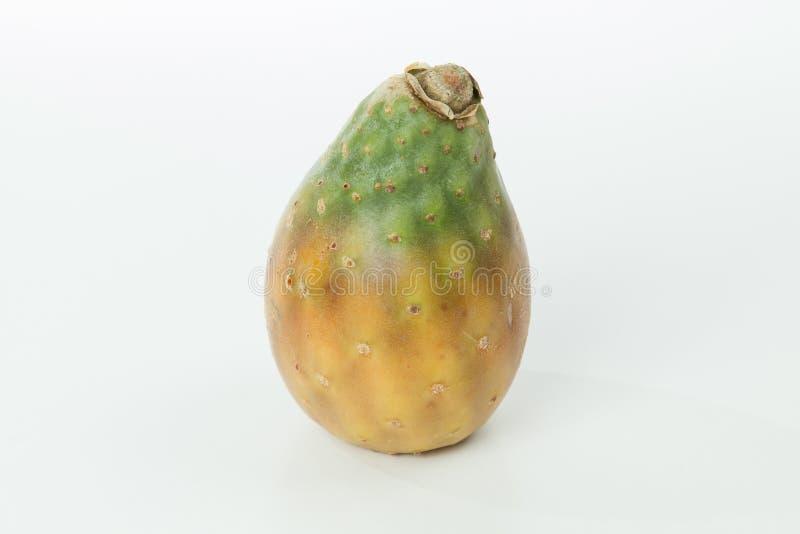 Kłującej bonkrety kaktusa owoc - Opuntia ficus indica; fotografia na neutralnym tle fotografia stock