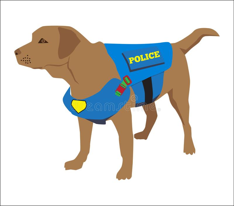 K9警犬佩带的徽章 拉布拉多猎犬习惯药物检查狗 警察概念的动画片训练 逗人喜爱的专业人员 库存例证
