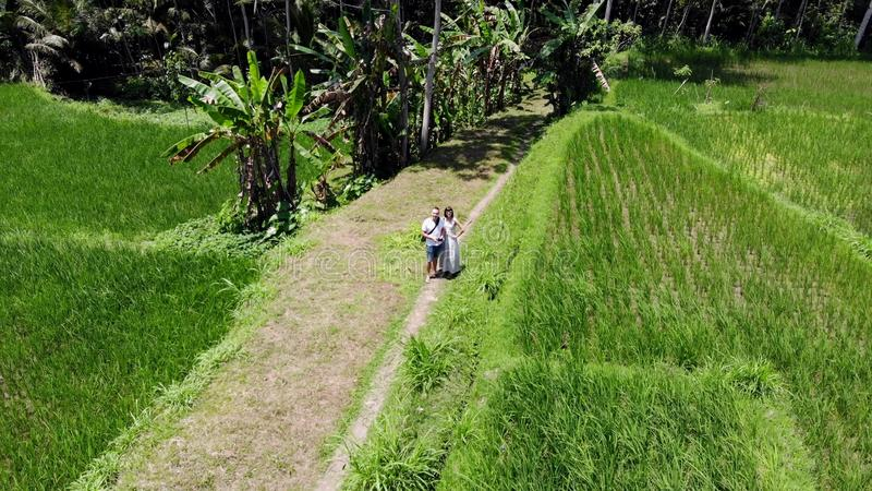 4K Aerial drone shot of couple launching drone on rice paddy terrace fields on Bali island. royalty free stock photo