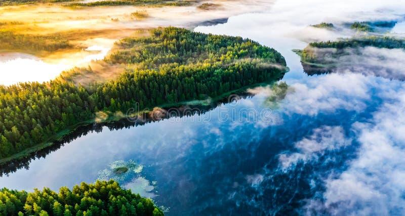 Nackte Frau Im Wald Fotos - Kostenlose und Royalty-Free