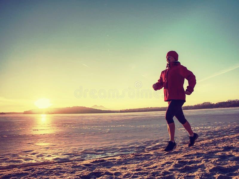 K?ra eller jogga p? stranden i vintern, morgon f?r solig dag arkivfoton