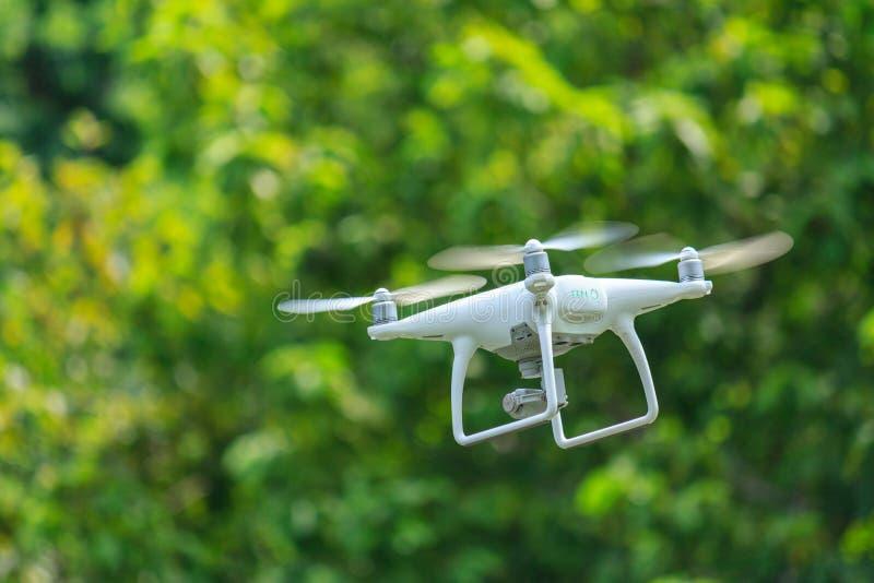 4k trutnia latanie zdjęcie stock