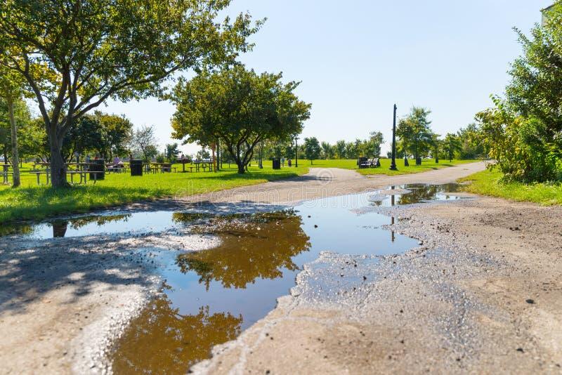 Kałuży woda w ogródzie zdjęcia stock