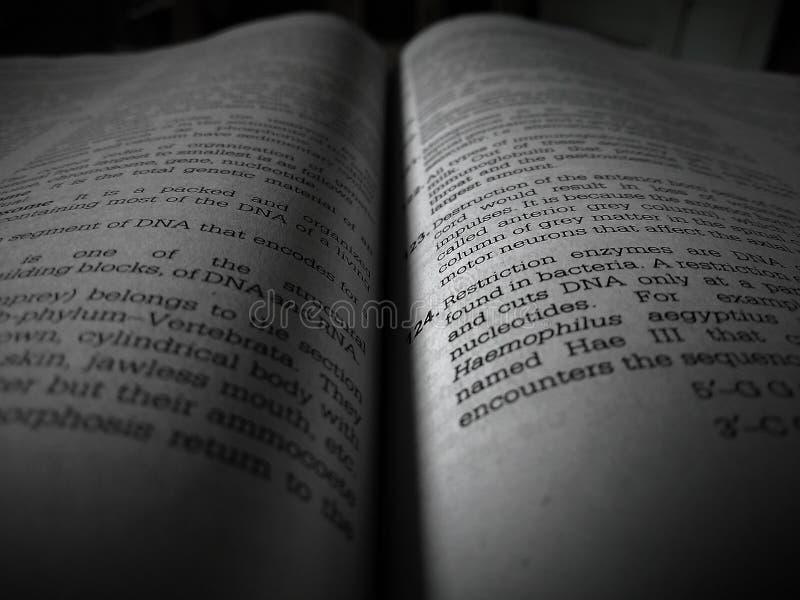 Każdy książka jest mój najlepszym przyjacielem I ten przyjaciel daje ja wiedzie fotografia stock