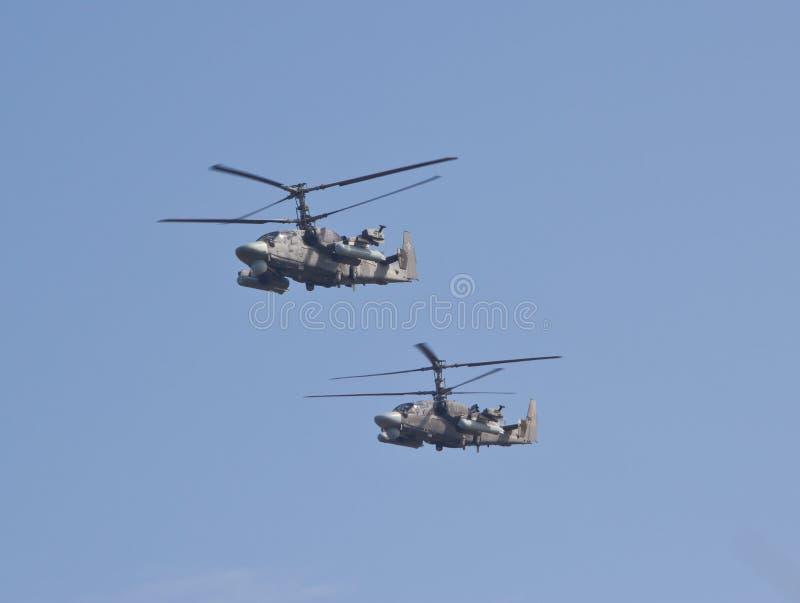Ka-52 ` аллигатора ` стоковая фотография rf