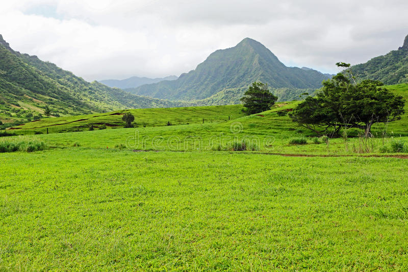 Ka'a'awa dal i den Kualoa ranchen royaltyfri fotografi