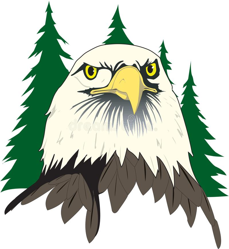 Kaal Eagle Face Illustration vector illustratie