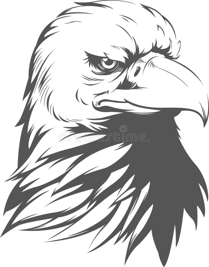 Kaal Eagle Silhouette vector illustratie