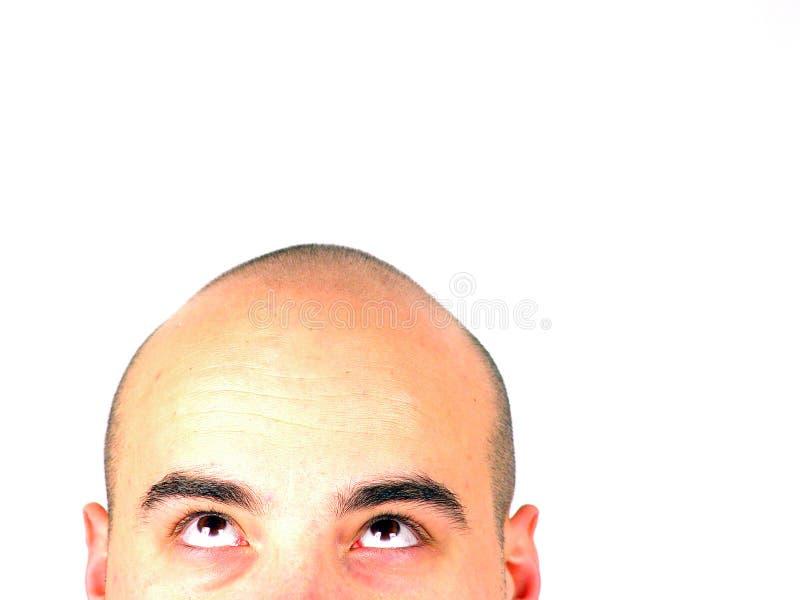 Kaal hoofd dat omhoog eruit ziet royalty-vrije stock foto's