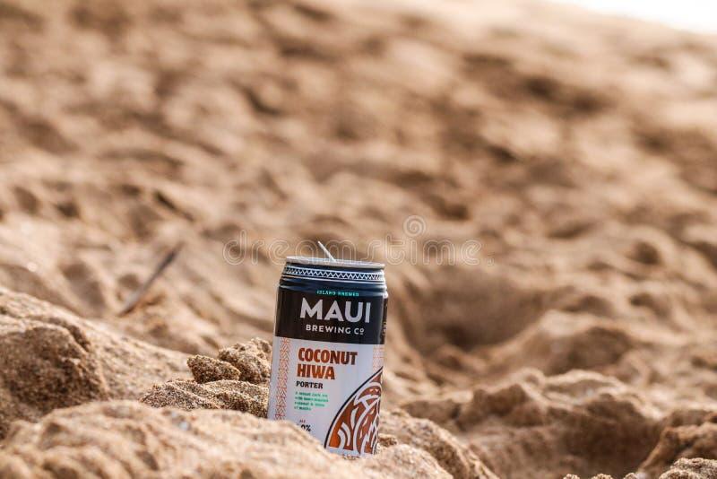 Kaanapalistrand in Lahaina, Maui, Hawaï royalty-vrije stock afbeelding