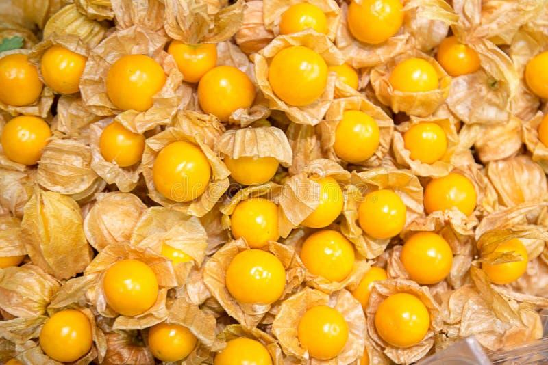 Kaapkruisbes Physalis, gezonde fruit en groente stock foto's