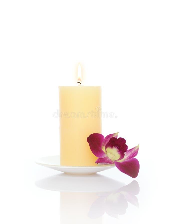Kaars en Orchidee royalty-vrije stock foto's