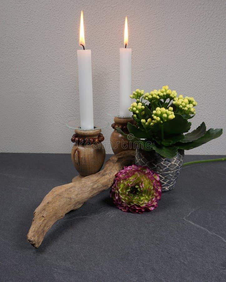 Kaarsen met potplant calanchoe en ranunculus huisdecoratie royalty-vrije stock afbeelding