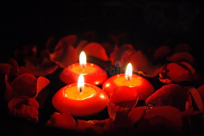 Kaarsen met roze bloemblaadjes _2 stock foto