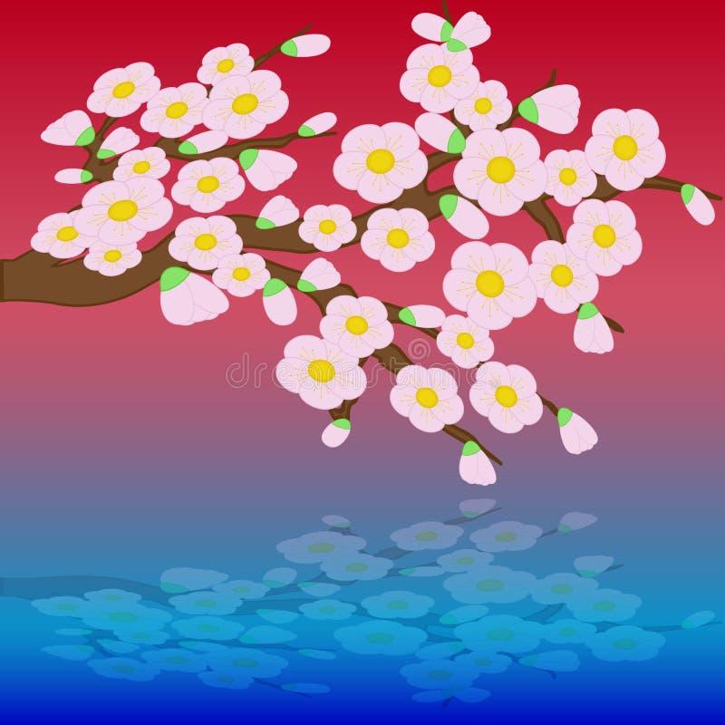 Kaart met de gestileerde bloemen van de kersenbloesem vector illustratie