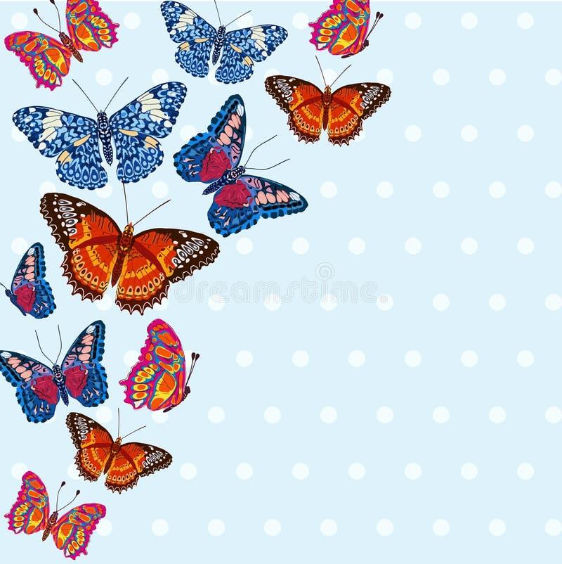 Kaart met mooie heldere vlinders stock illustratie