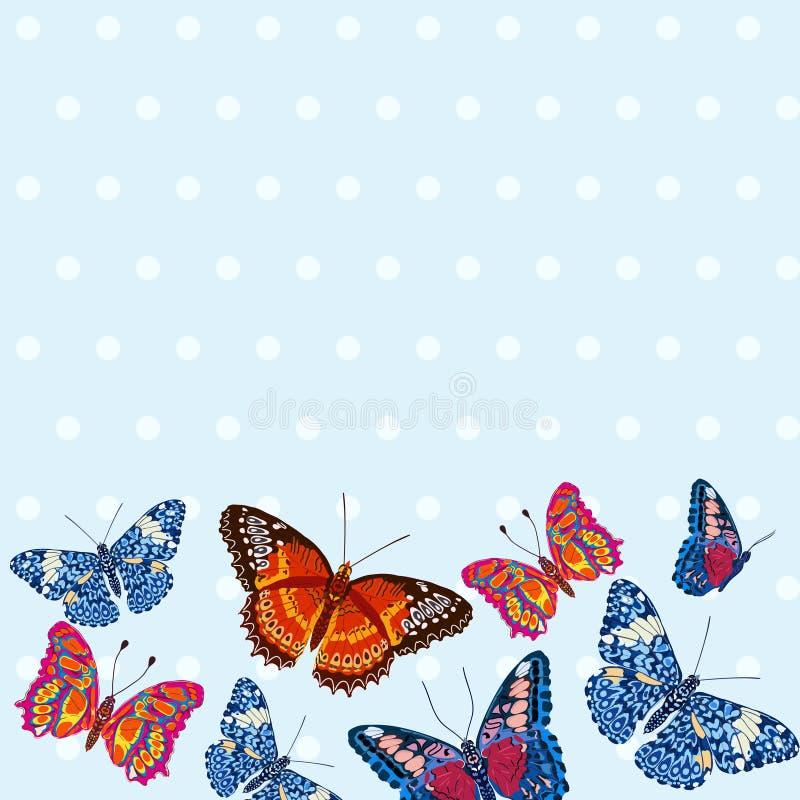 Kaart met mooie heldere vlinders, stippatroon stock illustratie