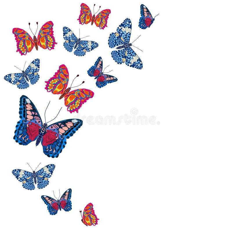 Kaart met mooie heldere vlinders, stippatroon royalty-vrije illustratie