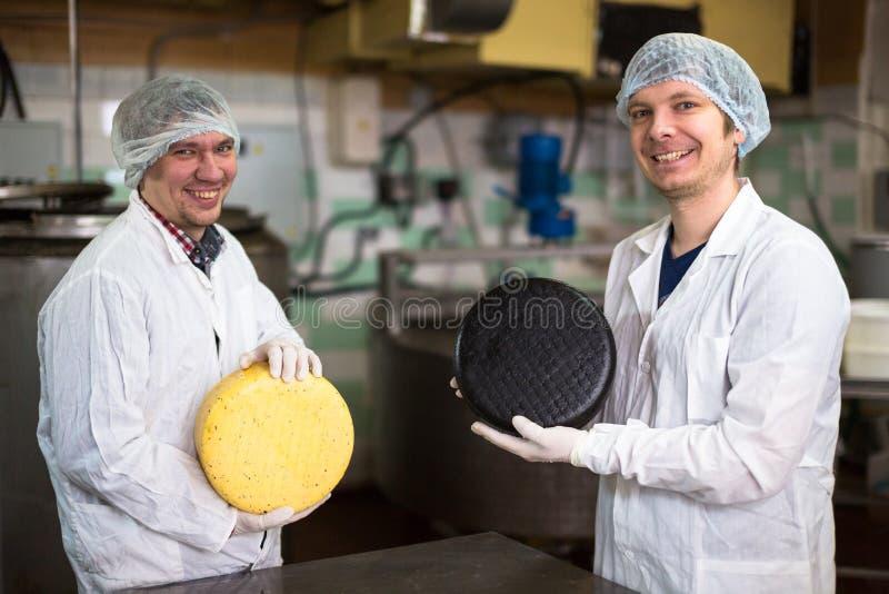 Kaas bij de zuivelfabriek, kaas met twee werkende hoofden stock afbeeldingen