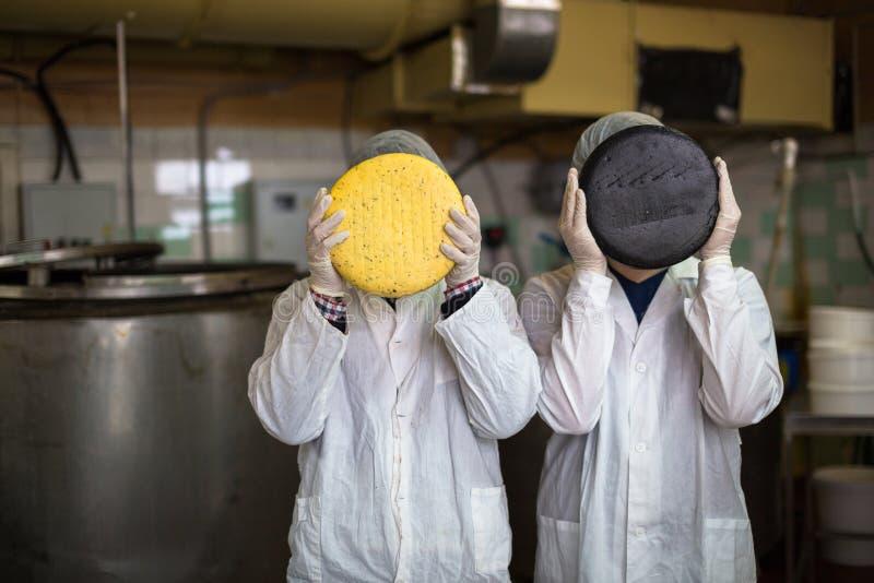Kaas bij de zuivelfabriek, kaas met twee werkende hoofden royalty-vrije stock foto