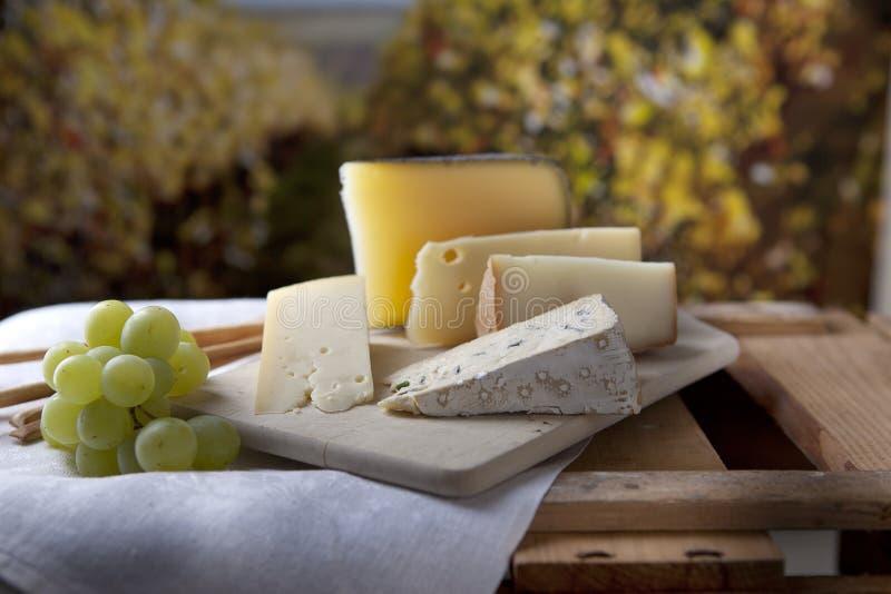 Kaas en Druiven royalty-vrije stock foto