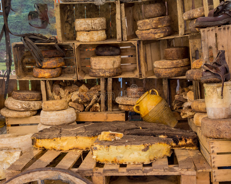Kaas in plattelander stock foto