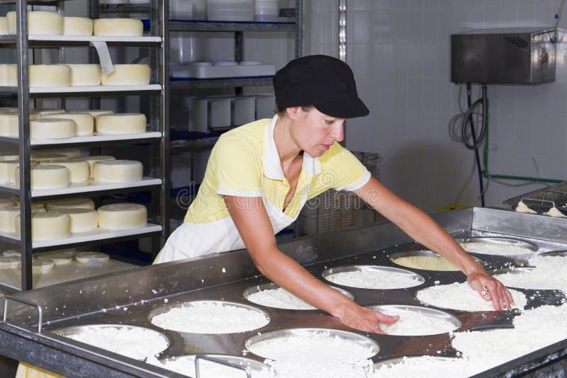 Kaasmaker die verse kaas voorbereiden stock fotografie