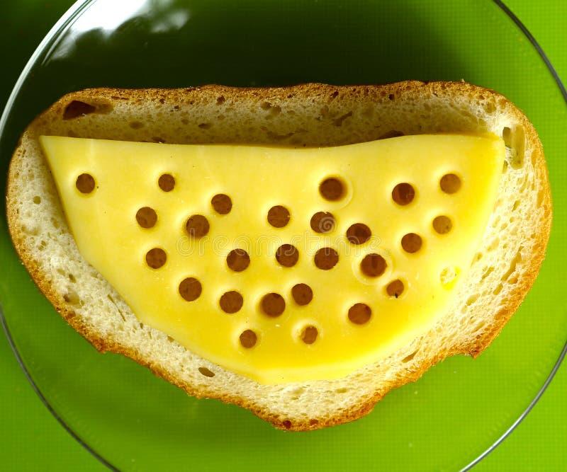 Kaasplak met gaten op dichte omhooggaand van de brood hoogste mening royalty-vrije stock fotografie