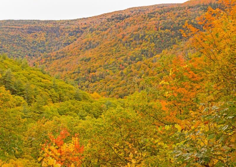 Kaaterskill Clove nei colori d'autunno fotografie stock
