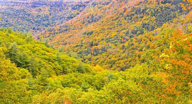 Kaaterskill Clove nei colori d'autunno immagini stock