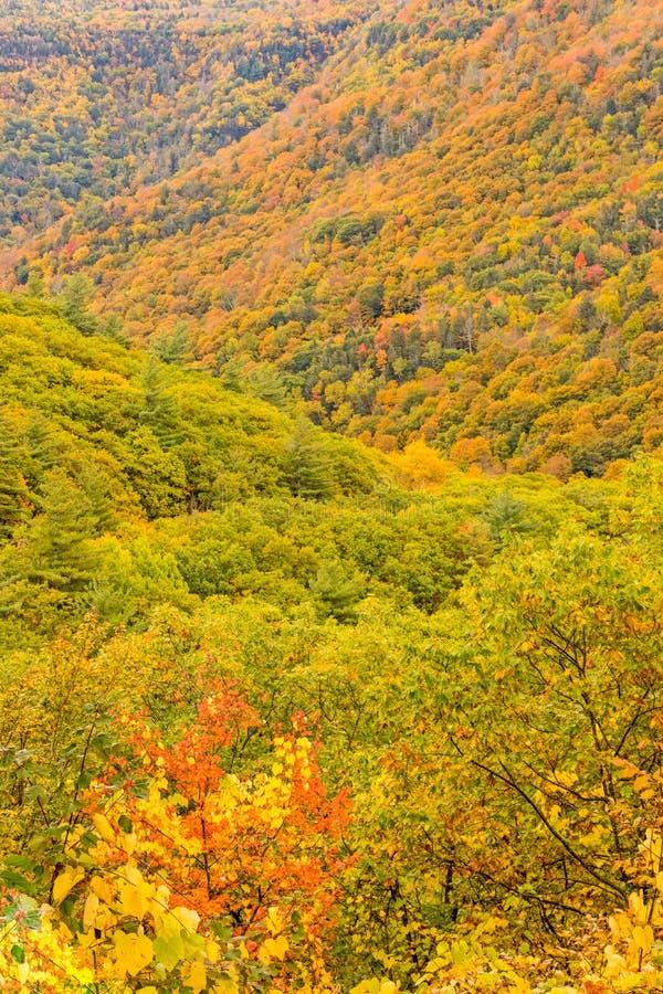 Kaaterskill Clove nei colori d'autunno fotografie stock libere da diritti