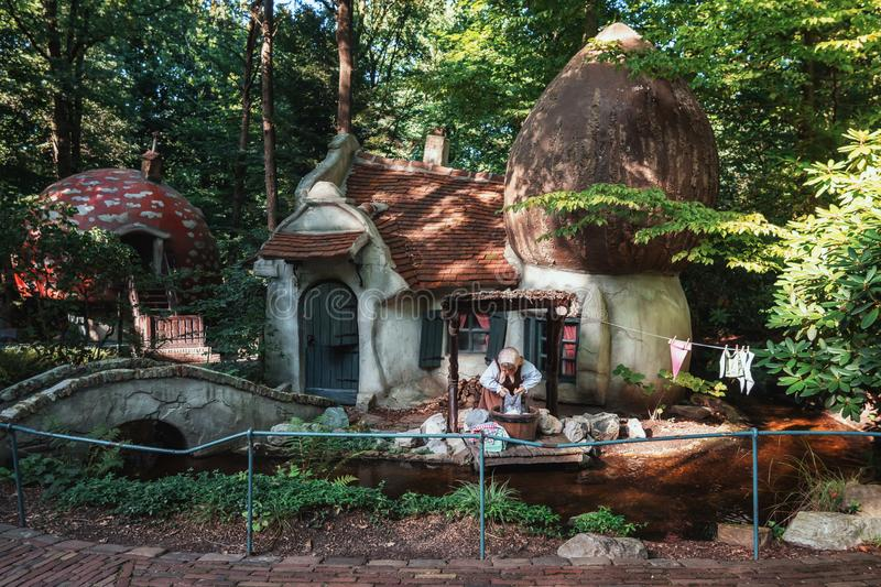 The gnome village with the mushroom houses in the fairytale fore