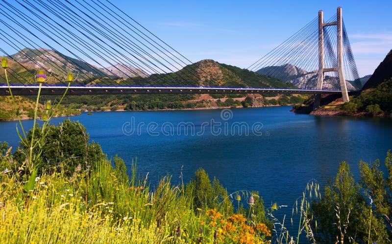 Kabel-bliven bro fotografering för bildbyråer