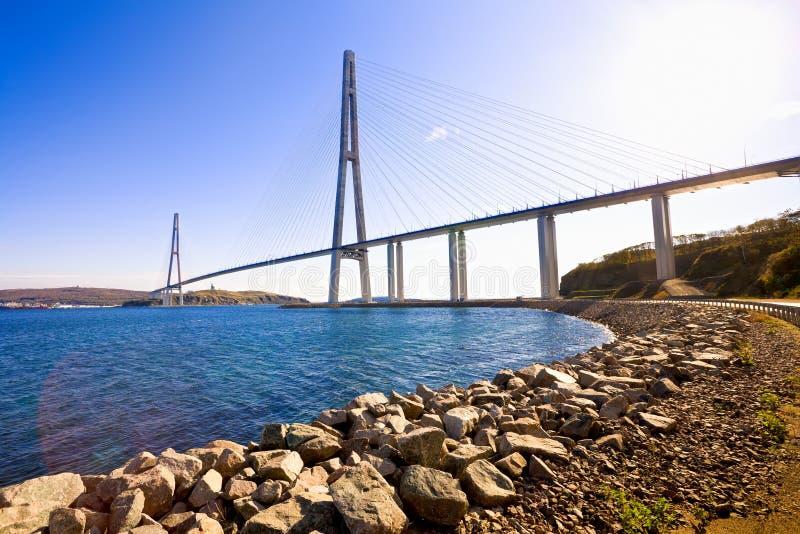 Kabel-bliven bro till den ryska ön. Vladivostok. Ryssland. royaltyfri fotografi