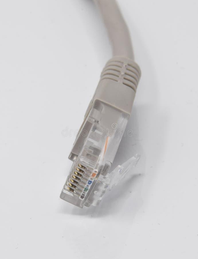 Kabel för RJ45 CAT5 arkivbilder