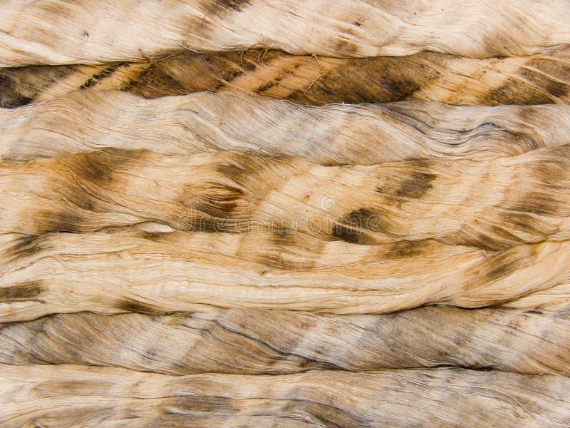 Kabel van draden van een natuurlijke oorsprong royalty-vrije stock afbeelding