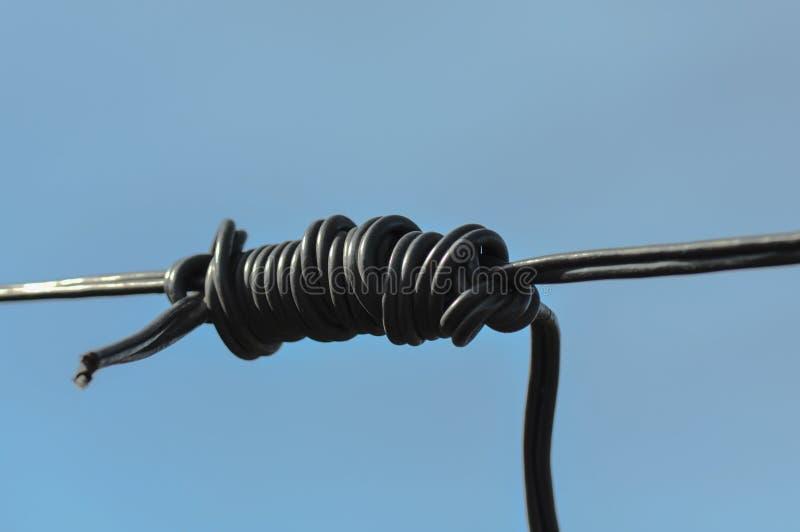 Kabel z kępką obraz royalty free