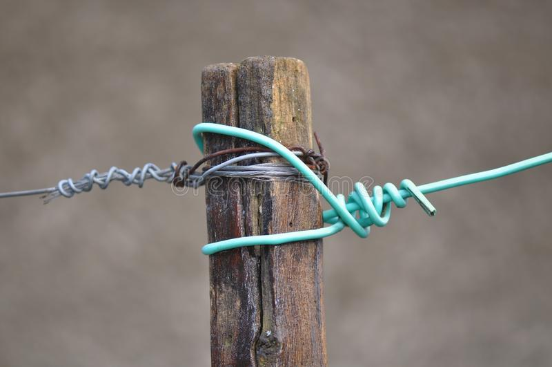 Kabel z kępką fotografia stock