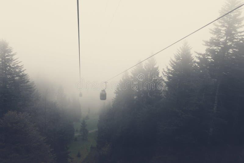 Kabelbil ovanför granträd i morgondimman fotografering för bildbyråer