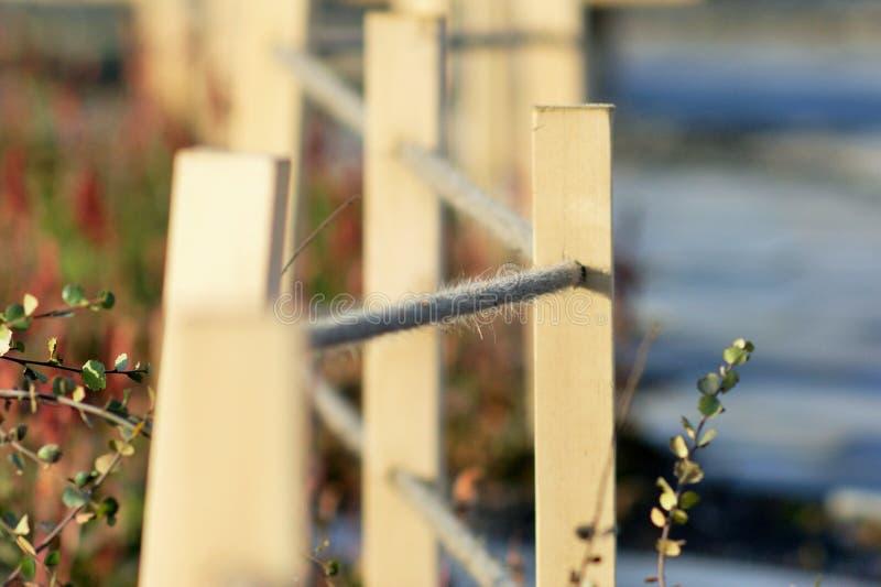 Kabelomheining in de tuin royalty-vrije stock foto