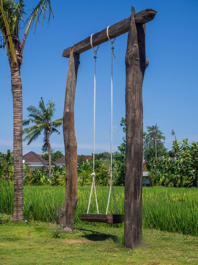 Kabelschommeling in een groen padieveld royalty-vrije stock foto's