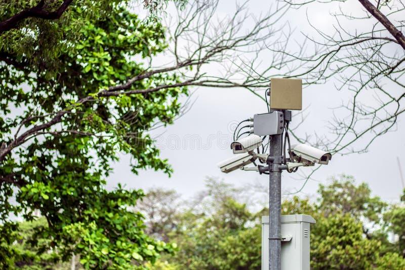 Kabeltelevisie-veiligheid in het park stock foto