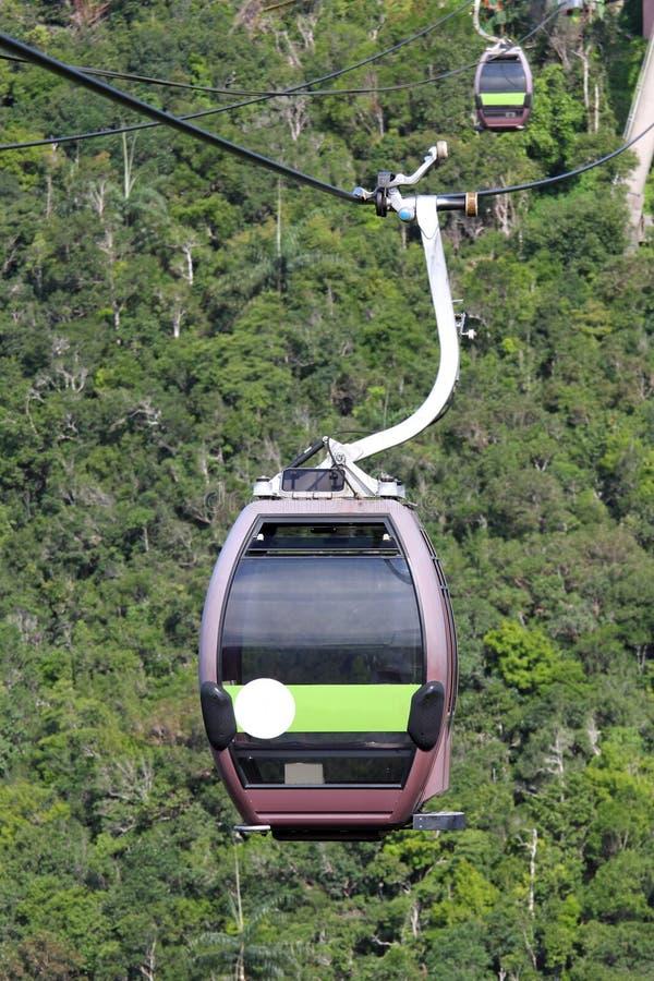 Kabelwagen in het Regenwoud stock afbeeldingen
