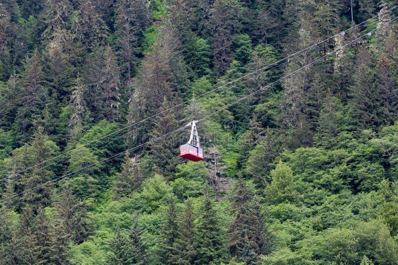 Kabelwagen over Evergreens stock foto's