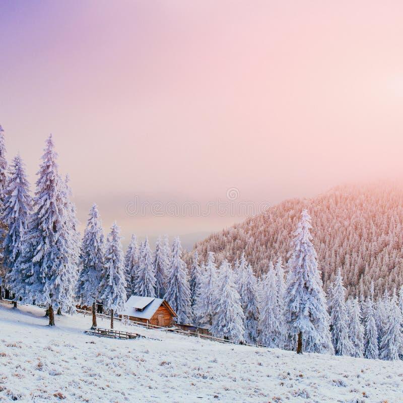Kabin i bergen i vinter fotografering för bildbyråer